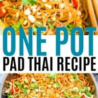 pad thai in a bowl and in the pot