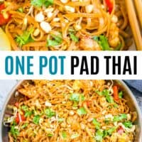 pad thai in the pot and in a bowl