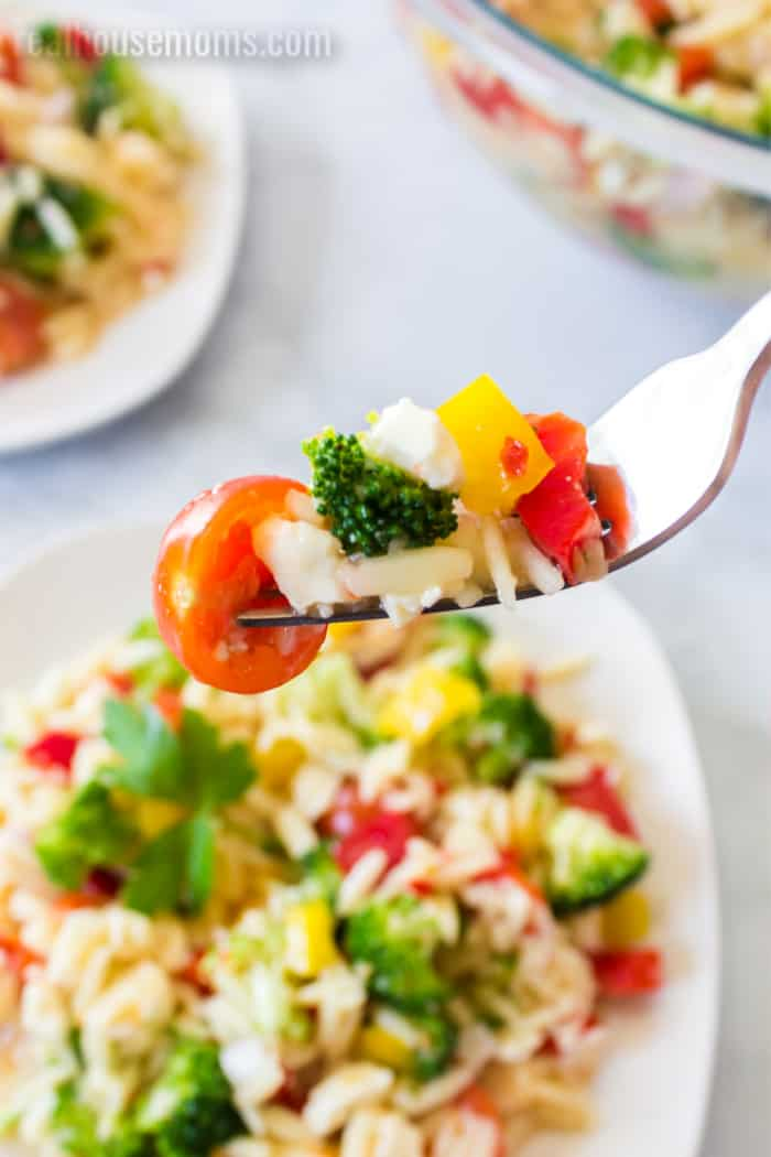 forkful of orzo pasta salad