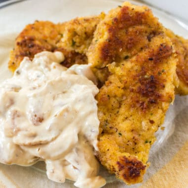 Parmesan Chicken Tenders with Onion Dip is a quick and easy meal idea. Whether served as a main dish or appetizer, it's a great way to satisfy picky eaters!