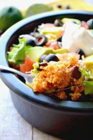 Quinoa Taco Bowl 5b