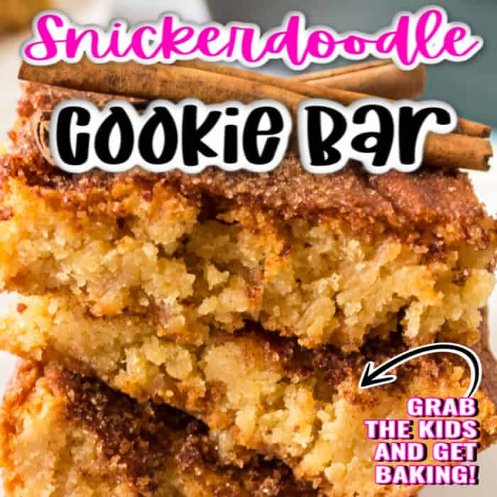 square image of snickerdoodle cookie bars