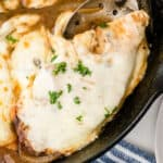 square close up of french onion chicken in a skillet