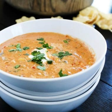 SLOW COOKER CHICKEN CHILI DIP a cheesy chili dip with all the flavors of a fiesta right in your mouth. This recipe makes a large batch, so it's a great dish to serve for your next party!