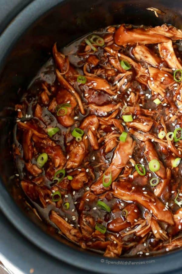 slow-cooker-honey-garlic-chicken-spend-with-pennies