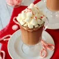 A creamy, delicious Spiked Peppermint Hot Chocolate is the perfect way to get the holidays started! Pair it with peppermint schnapps for even more holiday cheer!