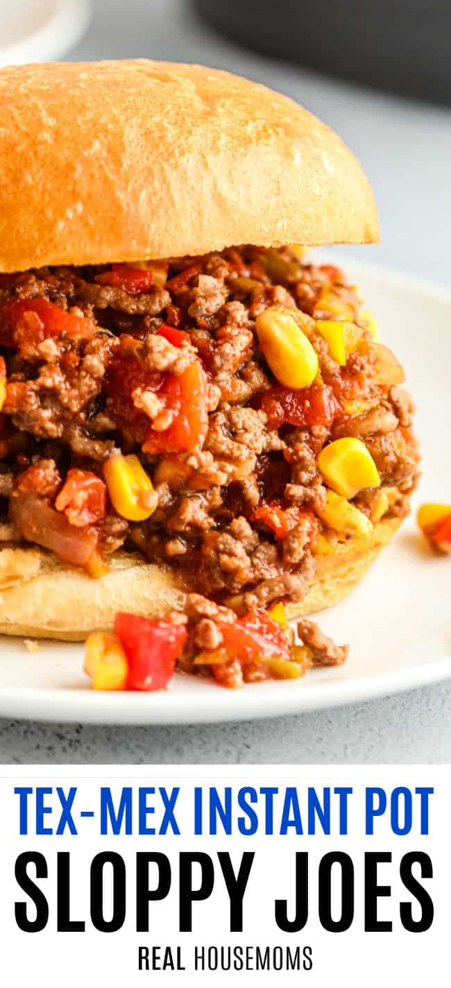 close up of tex mex sloppy joes with text