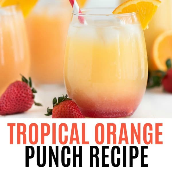 Tropical Orange Punch is the ultimate refreshing summer drink! Cool down at your summer parties with a glass of this delicious citrus drink!