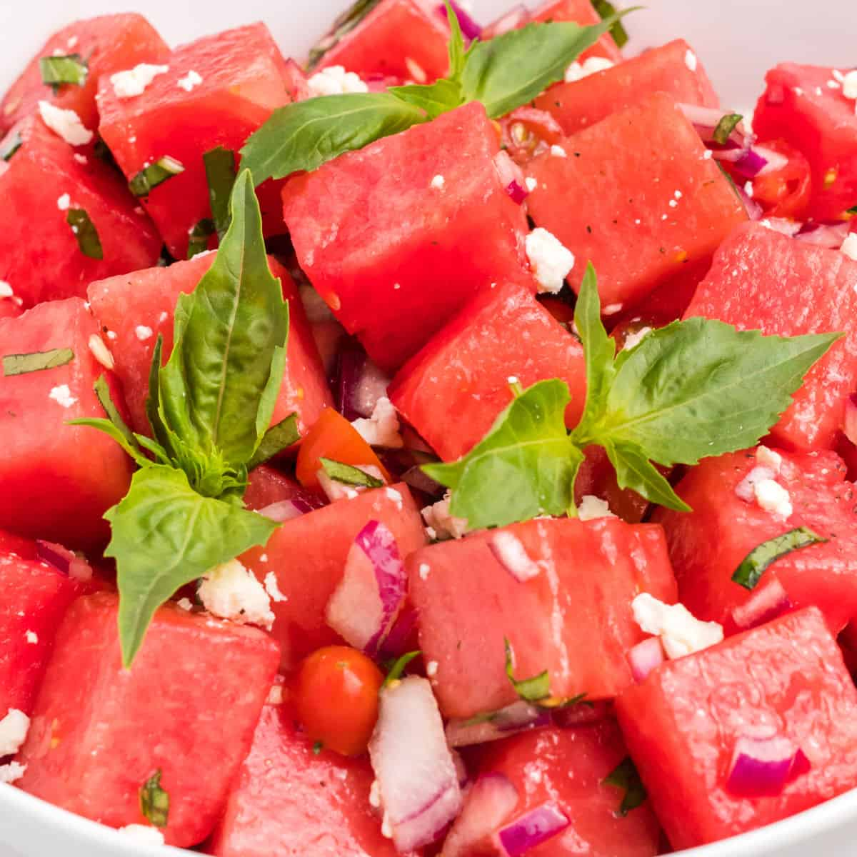 square close up of watermelon salad in a bowl with basil sprigs