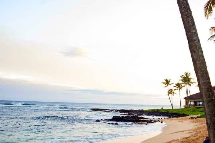 In ConTent- Kauai -beach-pic-ezpz-mealz