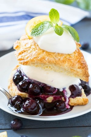 blueberry shortcake 2-2