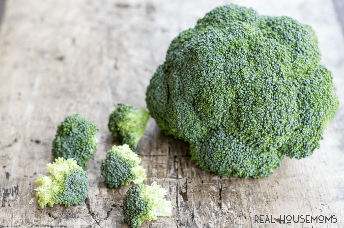 This Simple Broccoli Casserole Recipe is a versatile side dish made with fresh broccoli and real cheddar cheese. Your family is sure to ask for it over and over again!